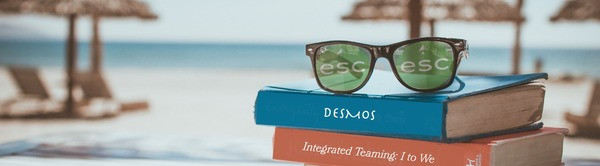 Graphic: ESC Summer Sunglasses and Books By the Beach